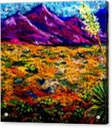 El Paso Acrylic Print