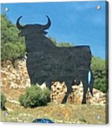 El Toro In The Andalucian Countryside Acrylic Print
