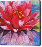 Ela Lily Acrylic Print