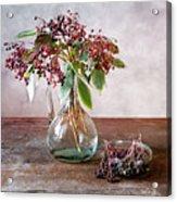 Elderberries 07 Acrylic Print