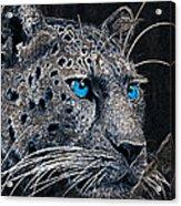 Electric Leopard Acrylic Print