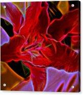 Electric Star Gazer  Acrylic Print