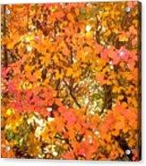 Elegant  Autumn Acrylic Print