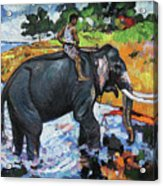 Elephant And Man Acrylic Print
