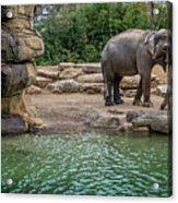 Elephant And Waterfall Acrylic Print