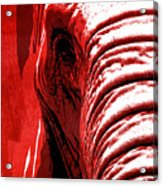 Elephant Animal Decorative Red Wall Poster 14 - By  Diana Van Acrylic Print