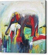 Elephant Baby And Mother Acrylic Print