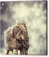Elephant Figure Acrylic Print