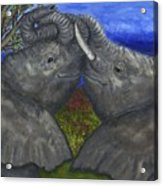 Elephant Hugs Acrylic Print