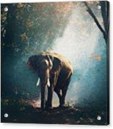 Elephant In The Mist - Painting Acrylic Print
