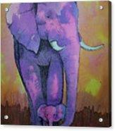 My Elephant   Acrylic Print