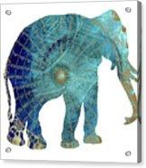 Elephant Maps Acrylic Print
