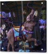 Elephant Ride At The Fair Acrylic Print