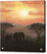 Elephant Sunset Acrylic Print
