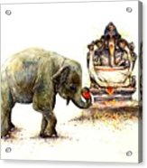 Elephant With Ganesha Acrylic Print