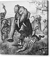 Elephants And Tiger, 1890 Acrylic Print