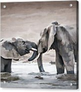 Elephants From Africa Acrylic Print