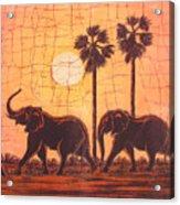 Elephants In Dry Heat Acrylic Print