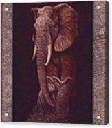 Elephants Acrylic Print