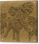 Elephants Three Acrylic Print