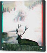 Elk - Use Red-cyan 3d Glasses Acrylic Print