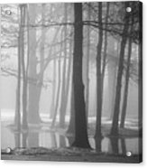 Ellacoya Fog - January Thaw Acrylic Print