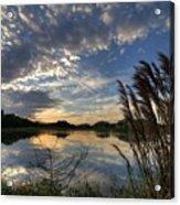 Ellenton Lake Sunset 05 Acrylic Print