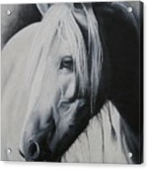 Elsa-free Spirit Acrylic Print