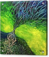 Embodied Energy Acrylic Print