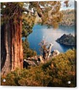 Emerald Bay Overlook Acrylic Print