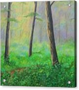 Emerald Forest  Carter Acrylic Print