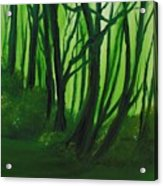 Emerald Forest. Acrylic Print