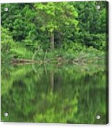 Emerald Green Reflections Acrylic Print