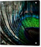 Emerald Shadows Acrylic Print