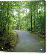 Emerald Trail Acrylic Print