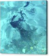 Water Horse Acrylic Print