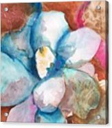 Emerging Flower Acrylic Print