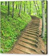 Empire Bluffs Trail Steps In Michigan Acrylic Print