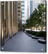 Empty Chicago Sidewalk Acrylic Print