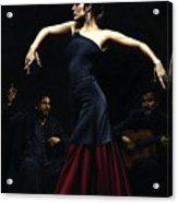 Encantado Por Flamenco Acrylic Print by Richard Young