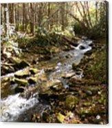 Enchanted Stream - October 2015 Acrylic Print