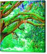 Enchanting Acrylic Print