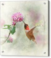 Enchantment In The Garden Acrylic Print