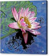 End Of Summer Shower Acrylic Print