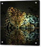 Endangered Acrylic Print