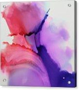Endless Dive Acrylic Print