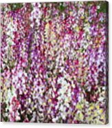Endless Field Of Flowers Acrylic Print