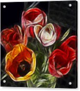 Energetic Tulips Acrylic Print