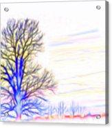Energy Tree Acrylic Print