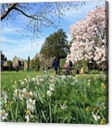English Country Garden Acrylic Print